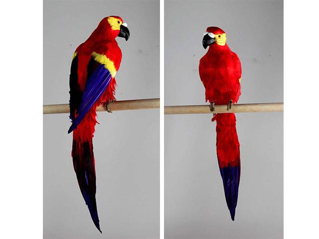 Pappagallo rosso 60cm a17775 oggettistica d 39 arredo for Oggettistica d arredo